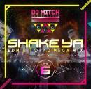 DJ Mitch a.k.a. Rocksta / SHAKE YA♪ -EDM & TOP40 MEGAMIX- VOL.6