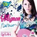 DJ RAN / Mignon -Platinum Party Mixx-
