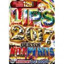 DJ DIGGY / LIPS 2017 -BEST OF NO.1 PV HITS- (3DVD)