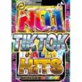 DJ DIGGY / NO.1 TIKTOKer ALL HITS (3DVD)