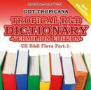 DJ DDT-TROPICANA / Tropical R&B Dictionary -Vermilion- UK R&B Flava Part.1