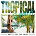 DJ DASK / Tropical Summer