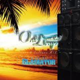 GLADIATOR / One Drop vol.25 -Love&Culture Mix-