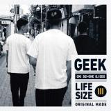 GEEK / LIFESIZE III