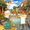 DJ CHARI & DJ TATSUKI / NEW WAVES THE MIXTAPE -SUMMER EDITION-