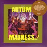 DJ KIYO / AUTUMN MADNESS 2