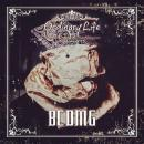 BCDMG / Ordinary Life