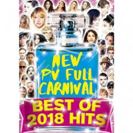 V.A / NEW PV FULL CARNIVAL -BEST OF 2018 HITS-