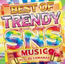 DJ YAMAKAZ / BEST OF TRENDY SNS MUSIC