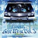 DJ COUZ / Best West Vol.3 -Shining-