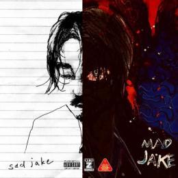 Jin Dogg / SADMAD JAKE (2CD)