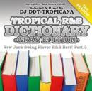DJ DDT-TROPICANA / TROPICAL R&B DICTIONARY -GRAY EDITION- NEW JACK FLAVOR R&B BEST! Vol.3