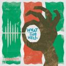 TOSHIKI HAYASHI (%C) / What the Hell(feat.おかもとえみ) [7inch]