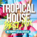 DJ YOPPY a.k.a. S1zzLe / Tropical House Best Mix