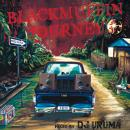 DJ URUMA / BLACKMUFFIN JOURNEY 2013