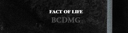 bcdmg-fact.JPG