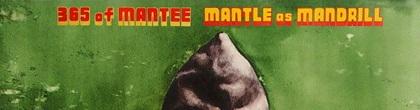 mantle-365.JPG