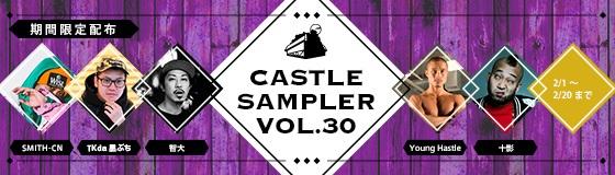 sampler30.jpg