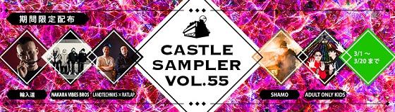 sampler55.jpg